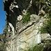 <br />Die Schutzmauer ist gut erhalten, das Heidenhaus nicht.<br /><br /><br />♩♫♬...Child In Time...♬♫♩<br /><br />(Blackmore's Night)<br />[http://www.youtube.com/watch?v=xY_qU0sGX1g]
