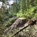 Tag 2: Der Zustieg in's lange Tal zum Cascade Mountain war einmal...
