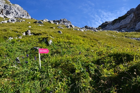 Wegweiser zum Inner Fürberg. Wenig später biegt man von diesem Weg nach links Richtung Nebelchäppler ab.