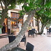Belle adresse : l'auberge provençale à Sospel