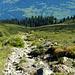 Blick zurück über die Weiden der Alpila Alpe