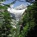 Trosibodu: Mitten im Wald Blick aufs Bietschhorn