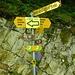 Der 66 du Doubs ist auch eine sehr lohnenswerte Weitwanderung (braune Wegweiser). Ideal als Zweitagestour