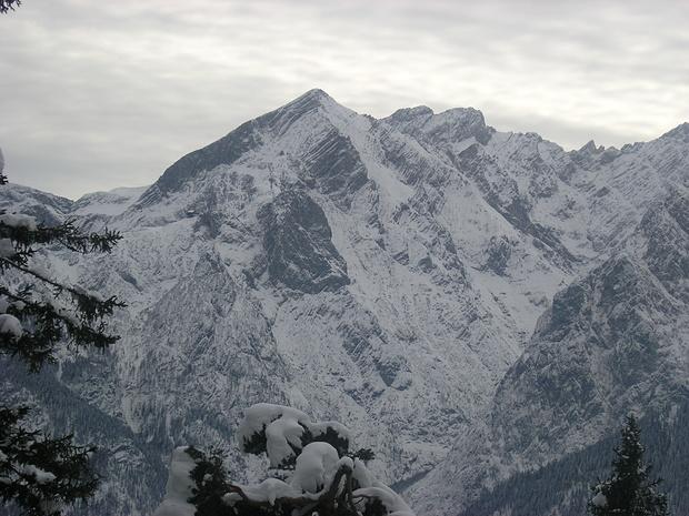 Blick aus dem Bergwald zur Alpspitze