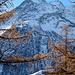 Alp Schweibu mit Lammenhorn, Balfrin