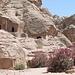 von den Nabatäern geschaffene Felsentempel in Petra