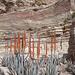 wunderschöner, farbiger Fels ist überall zu finden in Petra