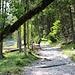 Zunächst Wanderweg an der Partnach entlang