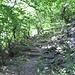 Partenza del sentiero: subito scalini!
