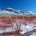 Farben am Mono Lake