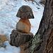 ein Männlein steht im Walde . .