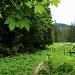 Sentier en lisière de forêt peu avant Oberi Matte