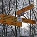Ab hier geht's auf der Eisbahn Richtung Schüpbach