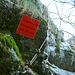 <br />♩♫♬...C'è Qualcosa Che Non Va...♬♩♫<br /><br />(Adriano Celentano)<br />[http://www.youtube.com/watch?v=U4x1dTA1RKI]<br />______________________<br />____________<br /><br /><br /><br />