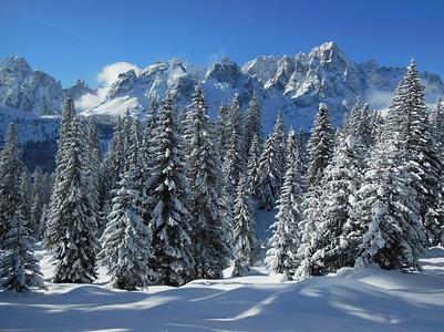 Abeti + Dolomiti + tanta neve fresca = tre ottime medicine contro lo stress
