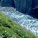 Kontrast von blumenreichen Wiesen zum abweisenden Gletschereis