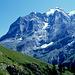 """""""Höhenweg"""" mit Jungfrau und Rottalgletscher"""