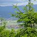 Lauschiger Höhenweg mit hübschen Ausblicken