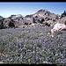 Lassen Peak vom Abstieg, Kalifornien, USA