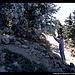 Aufstieg zum Watchman, Crater Lake NP, Oregon, USA