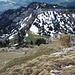 Die letzten Meter vor dem Ausstieg aus der Südflanke. Blick hinunter auf die Alp Birchboden.