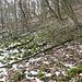 Im Aufstieg zum Ovčín - Laubwald und Flächen mit Gesteinsbrocken bedecken die Flanken des Basaltkegels.