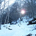 in discesa nel bosco sotto Cima Pianca con il sole che cerca di far capolino tra gli alberi...