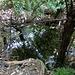 Wasserstelle in Camp 2