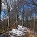 hübsche Kammwanderung vom Gipfelkreuz zur Aussichtsterrasse (mit Ruhebank, Feuerstelle, Tisch und Bänken und Holzlager - auf 998 m.ü.M.; höchster Punkt des Roggen!)