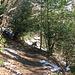 Il sentiero da Cabbio fa spesso dei lunghi traversi per avvicinarsi al Passo Prabello