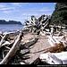 Ozette Island, Beach Trail, Ozette Loup, Olympic NP, Washington, USA