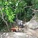 Steiler Abstieg durch den Fels, um an den Strand zu gelangen