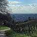 Weg hinauf zum Kirchberg