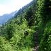 zwischen Chalcherli und Ahornhütte