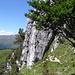 """Spigolo"", 5b, Klettergarten Sass dal Gatt"