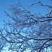 Tutte le sfumature dell'azzurro