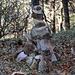 Ein Steinmännchen steht nun auf dem Balsberg (813m).