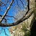 <br />Gelbe Pfeile (oben rechts) ➙ Irgendwo unter dieser Felsen-Nase klebt das Heidenhaus am Felsen.<br /><br />Den Weg muss ich aber noch finden. (Huh Huh) (Wenn das nur nicht daneben geht...!!!)<br /><br />(Ehrlich gesagt - ich habe Schiss.)