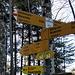 hier quert man den normalen Wanderweg und weiter geht es zum Schelmenloch - steiler Aufstieg ist angegeben
