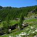 alpe Alzasca