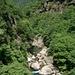 Wild: Granit und Kastanienbäume
