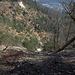 Die Fallätsche, ein von weitem sichtbarer Sandsteinabbruch, der nicht unriskante Aufstiegsrouten bietet.