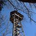 Der Turm auf der Albis-Hochwacht. Da war ich schon so oft droben, den erspare ich mir heute mal.