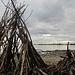 viel Treibholz für fantasiereiche Baumeister