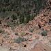 Der Weg hinunter durch den westlichen Fels-Steilabbruch