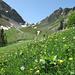 Le col de Tsermon depuis la vallée de Motélon