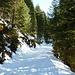 Aufstieg zur Hütte über den nur leicht ansteigenden Versorgungsweg