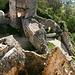Die verwinkelte Burganlage Landskron von der Wehrplatte aus gesehen (Pt. 558.7). Rechts im Talgrund sind die Häuser von Flüh zu erkennen.