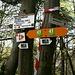 Verschiedene schweizerische und französische Wegmarkierungen im Wald von Palmen.