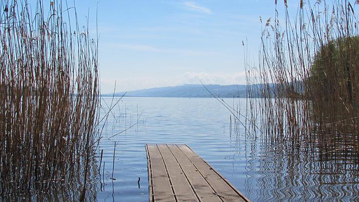 Ein Bild, das Wasser, draußen, Zaun, Boot enthält.  Automatisch generierte Beschreibung